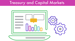 Treasury and Capital Markets